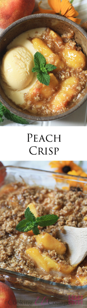 Peach Crisp Long pin